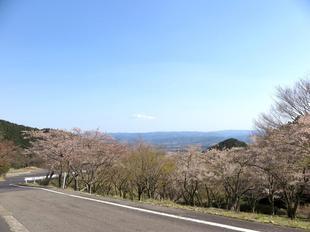 koegatawa.jpg