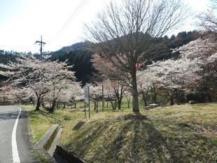 koegatawa04.jpg