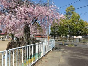 nishikaiji4-9-12.jpg