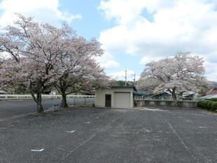 ooihigashi1.jpg