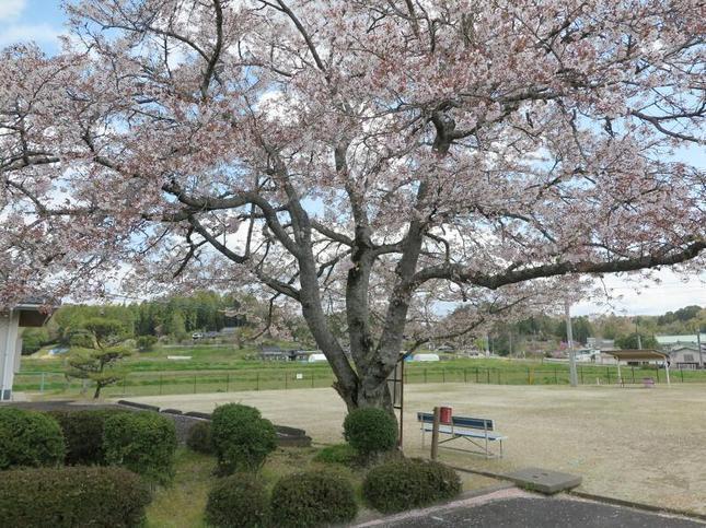 ooihigashi9.jpg
