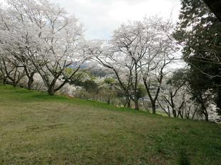 shitori-koen10.jpg