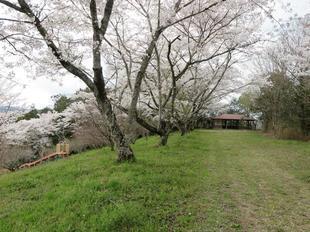 shitori-koen13.jpg