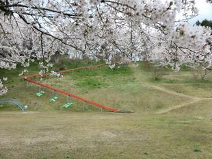 shitori-koen3.jpg