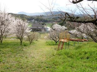 shitori-koen7.jpg