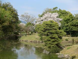 syuraku4-4-11.jpg