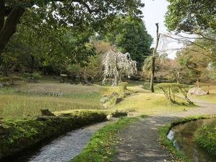 syuraku4-4-8.jpg