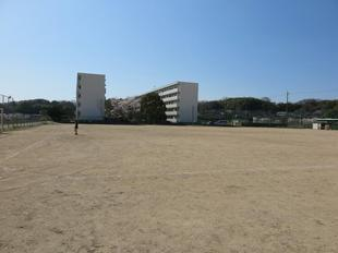takanokoyou-kouen1.jpg