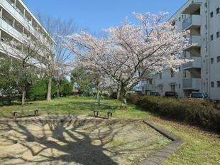takanokoyou-kouen13.jpg