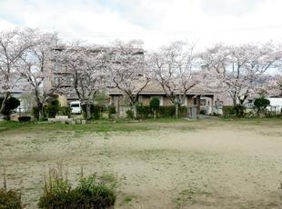 takenoshita1.jpg