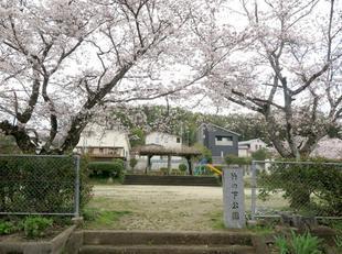 takenoshita6.jpg