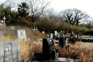 2010-2-25bochi.JPG