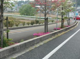 hanamizuki10.jpg