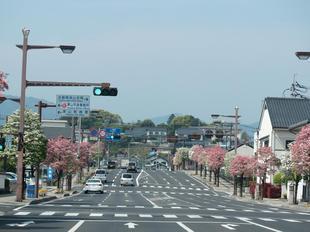 hanamizuki4.jpg