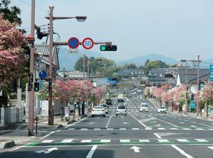 hanamizuki6.jpg