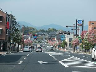 hanamizuki7.jpg