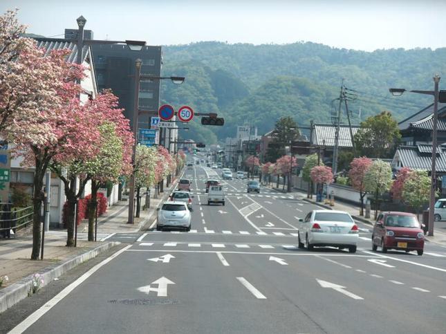 hanamizuki8.jpg