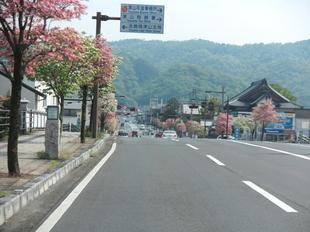 hanamizuki9.jpg