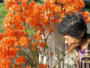 hashimoto-syoo-2.jpg