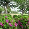 小橋公園(院庄)