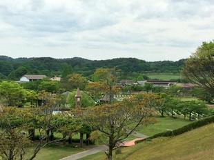 makibanoyakata5-17-12.jpg