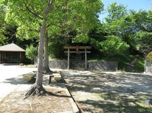 6-7kawasakiyuenchi18.jpg