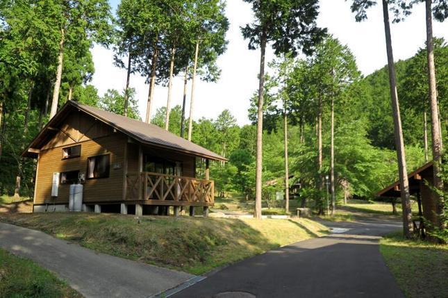 camp site17.jpg