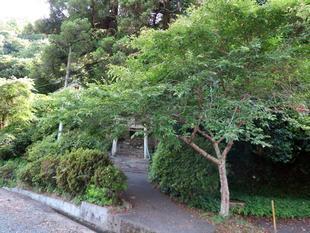 oshibuchi6-24-9.jpg