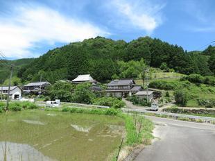 shiroyama1.jpg