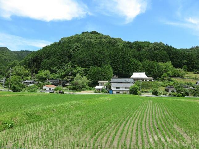 shiroyama3.jpg
