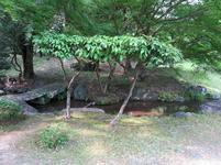 syuraku6-6-2.jpg