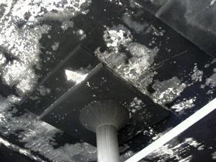 2007-1.jpg