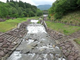 nagi-ajisai26.jpg