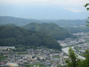 oyama-ajisai5.jpg