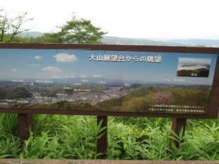 oyama-ajisai6.jpg