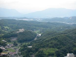 oyama-ajisai7.jpg
