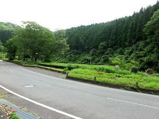 2010ichinowatari16.jpg