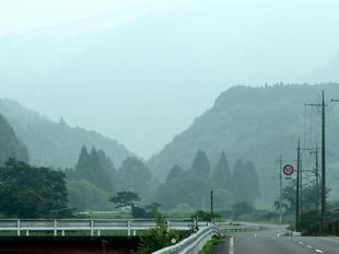 miura-kamo1.jpg