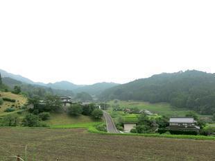miura-kamo9.jpg