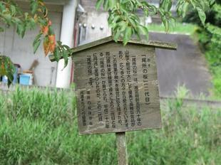 takenoshita10.jpg