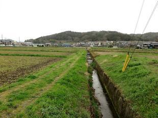 yudaimyoujin8.jpg