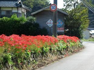 2020-10-1yoshimi14.jpg