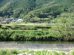 2020-10-1yoshimi15.jpg