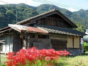 2020-10-1yoshimi33.jpg