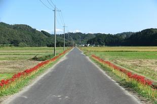 2020-10-1yoshimi34.jpg