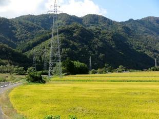 2020-10-1yoshimi5.jpg