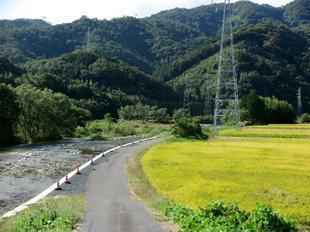 2020-10-1yoshimi6.jpg