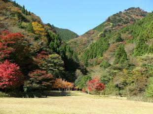 11-12-tsugawa15.jpg