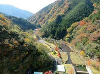 11-12-tsugawa17.jpg