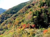 11-12-tsugawa4.jpg